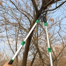 修枝剪修剪樹枝果樹剪刀粗枝剪園藝大力剪樹剪子省力園林工具
