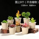 花盆陶瓷肉肉塑料紫砂多肉植物多肉花盆【英賽德3C數碼館】