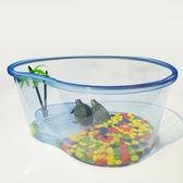 烏龜缸 巴西龜烏龜缸帶曬臺龜盆寵物情人節 雲雨尚品