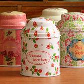 【BlueCat】花草風格尖頭馬口鐵茶葉罐 收納盒