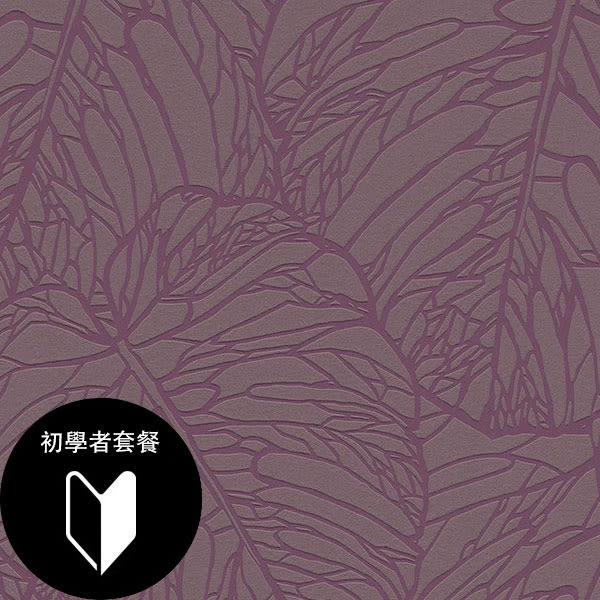 進口牆紙 朗飾rasch 歐美壁紙+施工道具套餐 北歐風 紫色 樹葉 葉脈 DIY工具套餐 Nordics 609363