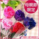 康乃馨香皂花X100支(每單支包裝-5色依數量平均出貨)
