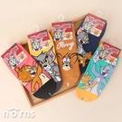 湯姆貓與傑利鼠直版襪- Norns正版授權 Tom and Jerry 台灣製造 襪子 短襪