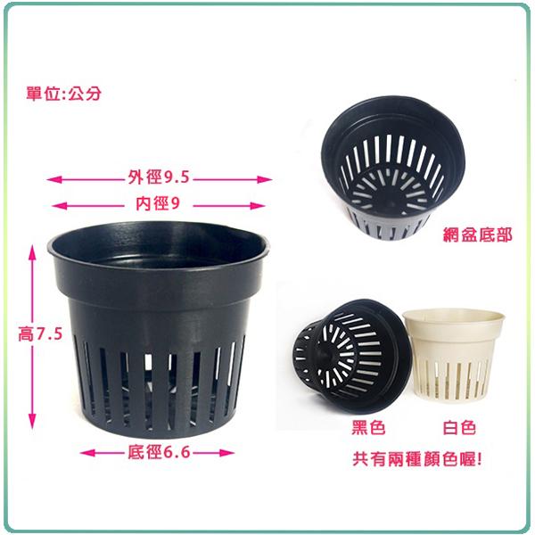 【綠藝家】3吋水耕栽培盆(水草栽培網盆.定植籃)10個/組(黑色)