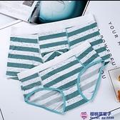 2條組綠白雙色斑點條紋純棉莫代爾棉簡約情侶內褲男士平角女士中低腰大碼內褲品牌【櫻桃】