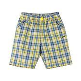 『小鱷魚童裝』格紋短褲(02號~08號)553646