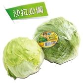 產銷履歷台灣美生菜350g