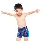船舵圖案  條紋樣式  帥氣泳褲