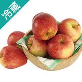 蜜香蘋果禮盒 8入【愛買冷藏】