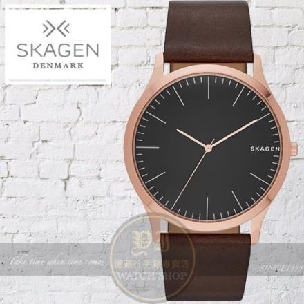 【南紡購物中心】SKAGEN丹麥設計品牌北歐經典簡約紳士腕錶SKW6330公司貨