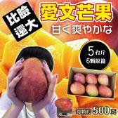 【果之蔬-全省免運】特大顆枋山愛文芒果6顆 (含箱重5斤±10%)