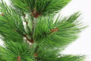 90CM綠色松針聖誕樹
