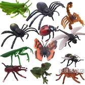 動物模型兒童早教益智玩具仿真昆蟲玩具模型動物塑膠模型昆蟲1-2-3-6周歲