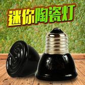飼養箱 爬蟲用品飼養箱保溫加熱燈 蜥蜴陸龜刺猬取暖夜燈小型陶瓷燈泡igo 寶貝計畫