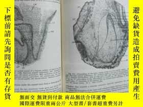 二手書博民逛書店Text罕見-book histology ( 組織學)外文版1