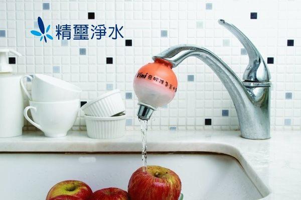 薇妮Vini蔬果潔淨省水球(TS-103)