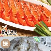 (5包)特大尾熟白蝦(約16尾/300g)+贈超大顆蝦仁(約11顆/150g)含運組