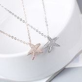 項鍊 925純銀鑲鑽墜子-清新自然生日情人節禮物女飾品2色73gx10【時尚巴黎】