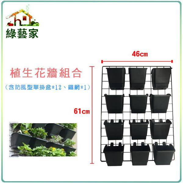 【綠藝家】植生花牆組合(含防風型單掛盆*12、鐵網*1)