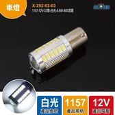 1157-12V-33燈-白光-6.6W-800流明-185*52mm(X-292-02-03)