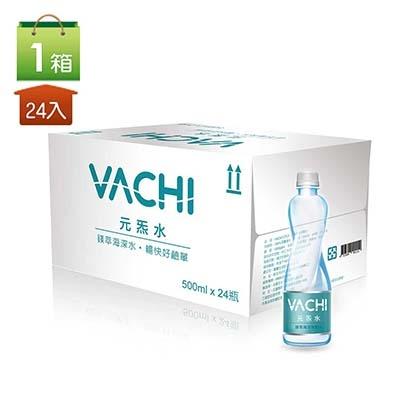 VACHI元炁水 鎂萃海洋深層水 跨年特賣