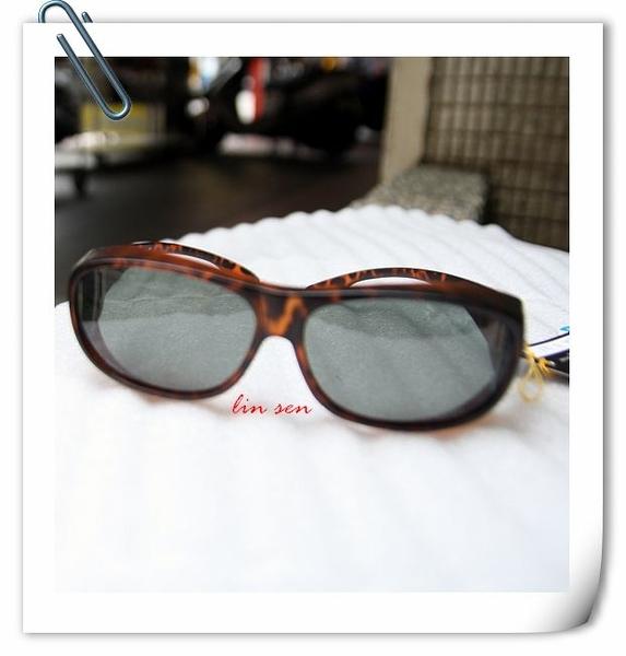 APEX眼鏡,偏光眼鏡,234/豹紋