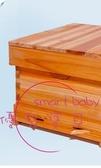 煮蠟蜜蜂中蜂蜂箱全套意蜂密峰養蜂工具專用杉木標準平箱 【快速出貨】