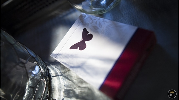 【USPCC撲克】Butterfly Playing Cards Marked (RED)