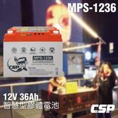 【進煌】MPS1236智慧型膠體電池12V36Ah /釣魚用電池 3C充電 USB充電 12V燈具 12V風扇可用