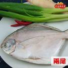鮮美家.富貴白鯧組(300-400g/尾,共2尾)﹍愛食網