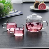 【玻璃濾壺】單人辦公室耐熱高溫玻璃迷你花茶泡茶壺透明功夫茶具小號茶壺過濾