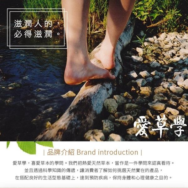 LHS 天然艾草肥皂 Natural Artemisia Indica Soap