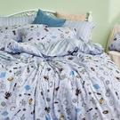 床包 / 雙人加大【宇宙塗鴉計畫-引力灰】含兩件枕套 100%精梳棉 戀家小舖台灣製AAS301