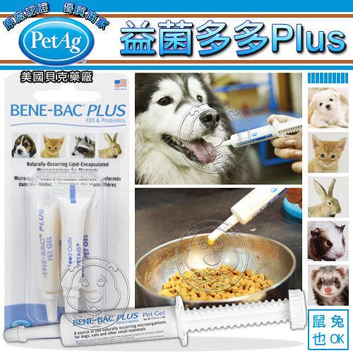 【培菓幸福寵物專營店】美國貝克PetAg BENE-BAC益菌多多膏針劑15gA5105(益生菌腸胃保健犬貓兔)