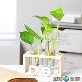 花瓶 創意水培花瓶透明玻璃水養綠蘿植物小清新擺件觀音竹富貴竹插花瓶 城市玩家