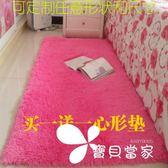 加厚可水洗絲毛客廳臥室茶幾床邊地毯可定做滿鋪可愛地墊
