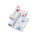 美國 Little Unicorn 有機棉紗布巾兩入組