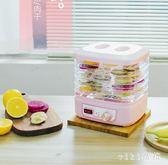 乾果機食品烘乾機水果蔬菜寵物肉乾風乾家用脫乾機小型禮品DC780【VIKI菈菈】