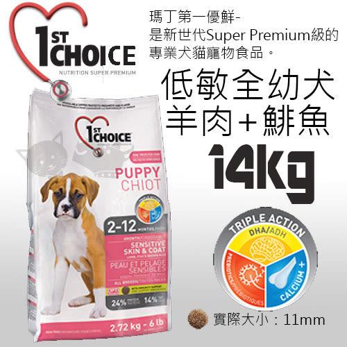 [寵樂子]《瑪丁-第一優鮮》全犬種幼犬羊肉+鯡魚+糙米配方-14KG