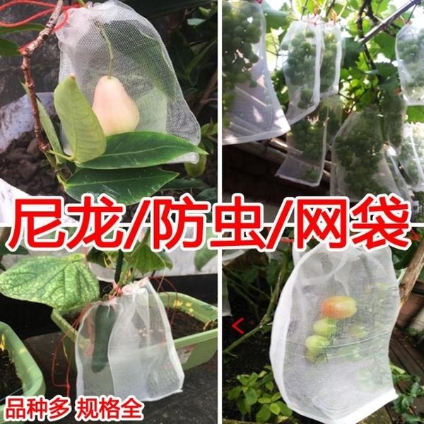 防鳥網 防蟲網袋瓜果防果蠅防鳥袋濾網浸種袋葡萄果樹水果套袋尼龍網袋 交換禮物