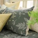 鴻宇 雙人特大床包組 100%精梳純棉 莫凡比 台灣製C20103