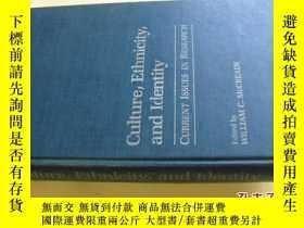 二手書博民逛書店英文原版罕見Culture, ethnicity, and identity :current issues in