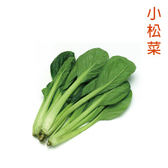 預購 【安心蔬食】水耕蔬菜-小松菜(150g)