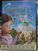 挖寶二手片-P01-154-正版DVD-動畫【奇妙仙子 拯救精靈大作戰 國英語】-迪士尼