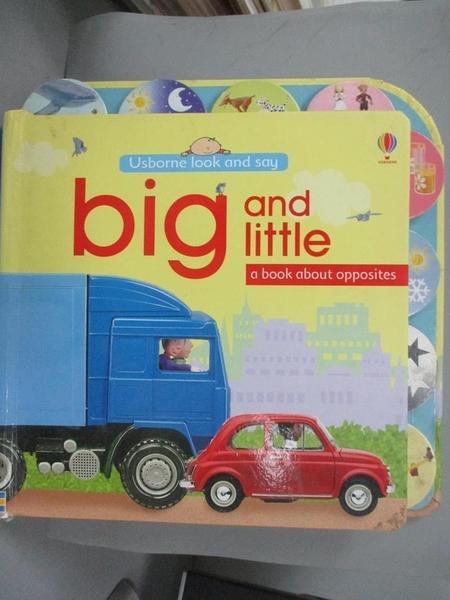 【書寶二手書T1/少年童書_PJM】Big and Little (Usborne Look and Say)_Felicity Brooks