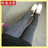 YOYO 中大尺碼素面內搭褲(XL-4L)300斤可穿AI1020