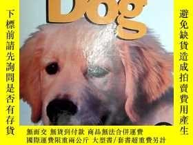 二手書博民逛書店兒童英文原版讀物:Dog罕見(Life Cycle of a .