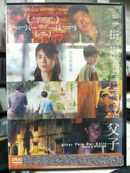 挖寶二手片-Y62-037-正版DVD-華語【父子】-郭富城 楊采妮 吳景滔 林熙蕾