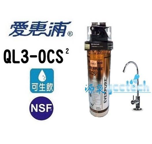 [本月下單隨貨贈7-11禮卷300元] 愛惠浦 O series全效系列淨水器 EVERPURE PURVIVE-OCS2
