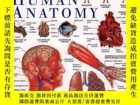 二手書博民逛書店Human罕見Anatomy (dk Visual Dictionaries)Y256260 Dk Publi